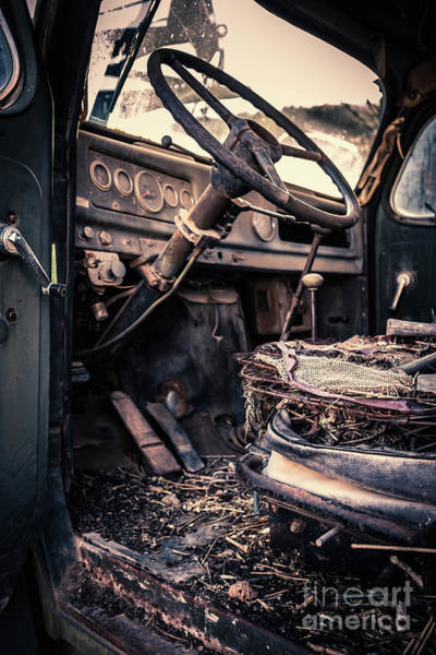 Photograph - Vintage Car Interior Abandoned by Edward Fielding