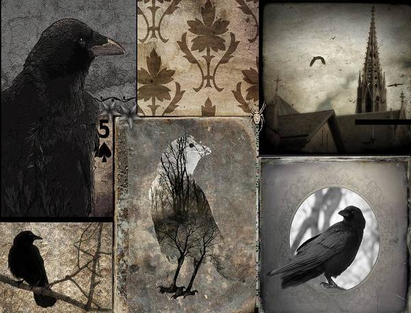 Wall Art - Photograph - Vintage Crow Montage by Gothicrow Images