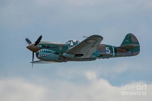 Photograph - Vintage P-40 by Tom Claud