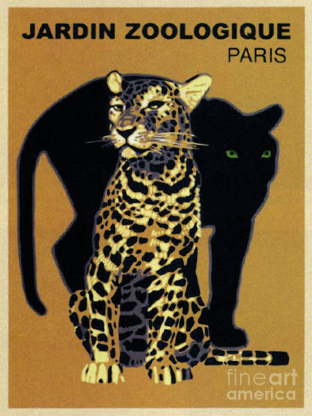 Wall Art - Painting - Vintage Paris Garden Zoo Ad Panther And Leopard Big Cats by Tina Lavoie