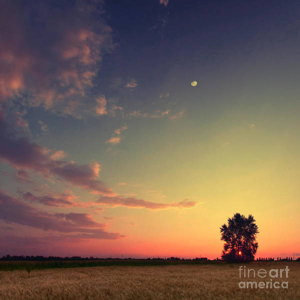 Wall Art - Photograph - Vintage Picture. Sunset With Moon And by Vitalii Bashkatov