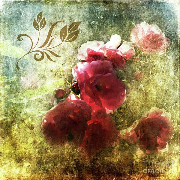 Digital Art - Vintage Roses by Liz Alderdice