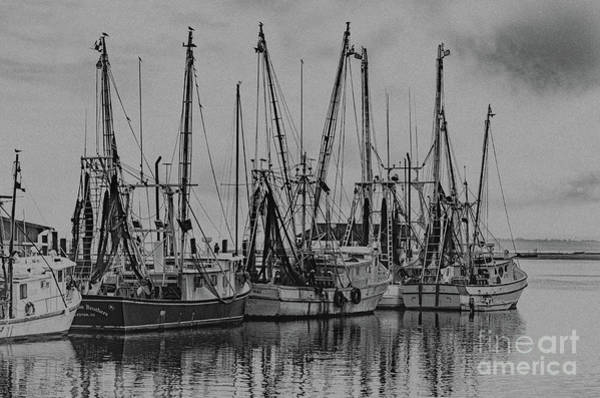Photograph - Vintage Saltwater Cowboys On Shem Creek by Dale Powell
