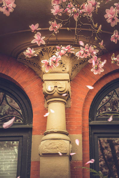 Photograph - Vintage Spring In Back Bay Boston by Joann Vitali