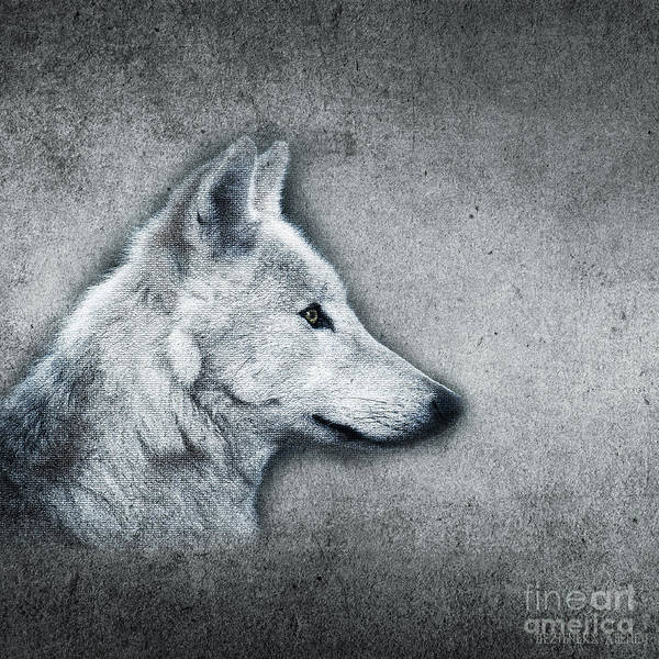 Husky Mixed Media - Vintage Theme- Mr. Wolf by Dezigners Agency