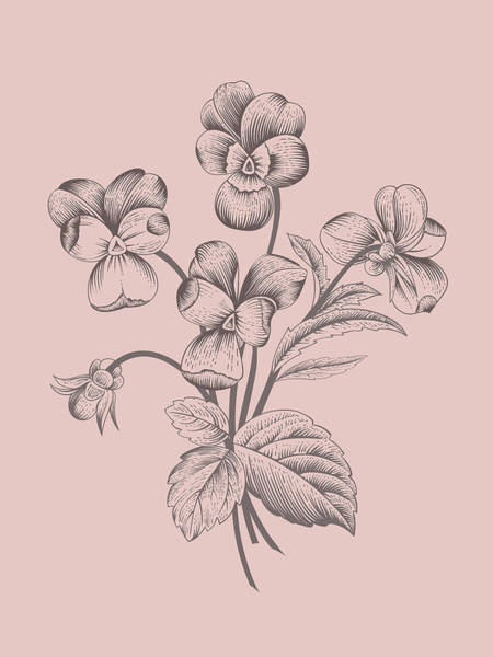 Bouquet Mixed Media - Violet Blush Pink Flower by Naxart Studio