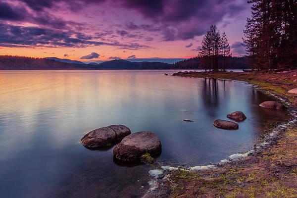 Photograph - Violet Dusk by Evgeni Dinev