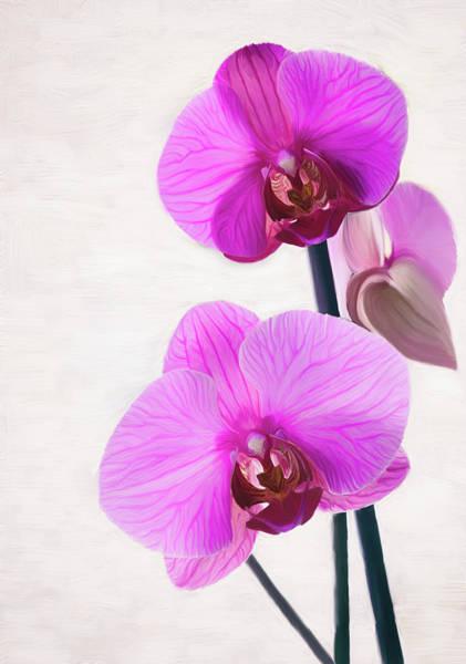 Growing Up Digital Art - Violet Orchids, Flower Painting by Jirka Svetlik