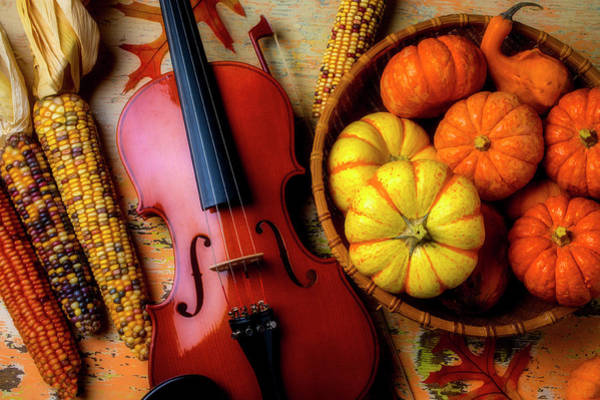 Wall Art - Photograph - Violin And Autumn Pumpkins by Garry Gay