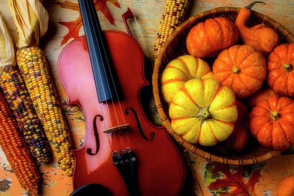 Wall Art - Photograph - Violin And Autumn Pumpkins by Garry Gay