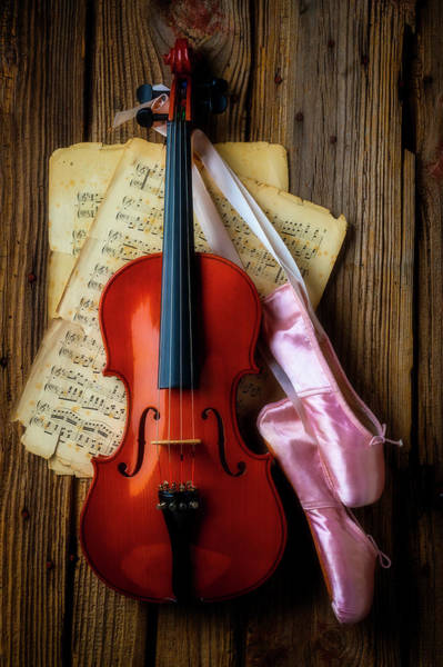 Wall Art - Photograph - Violin And Ballet Slippers by Garry Gay