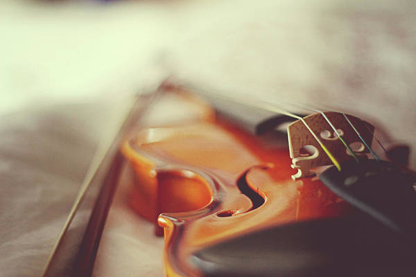 Toronto Ontario Photograph - Violin And Bow by Anydirectflight