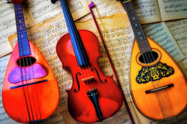 Bluegrass Photograph - Violin And Mandolins by Garry Gay