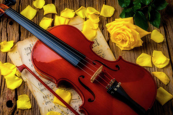 Wall Art - Photograph - Violin And Yellow Roses by Garry Gay