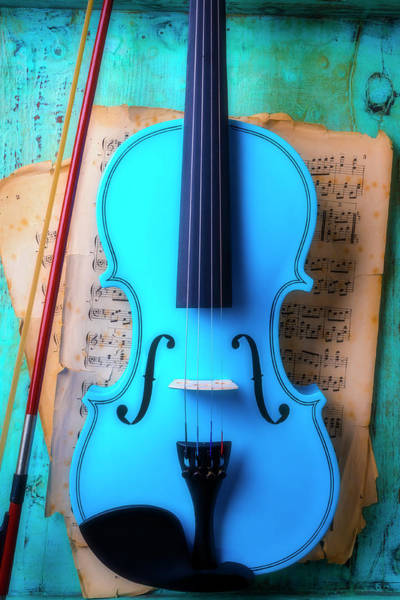 Photograph - Violin Blues by Garry Gay