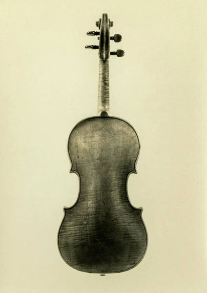 Wall Art - Painting - Violin, Cremona, Antonio Stradivari - 2, 1683 by Antonio Stradivari