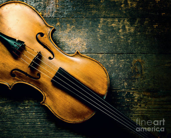 Wall Art - Photograph - Violin On Textured Background by Jelena Jovanovic
