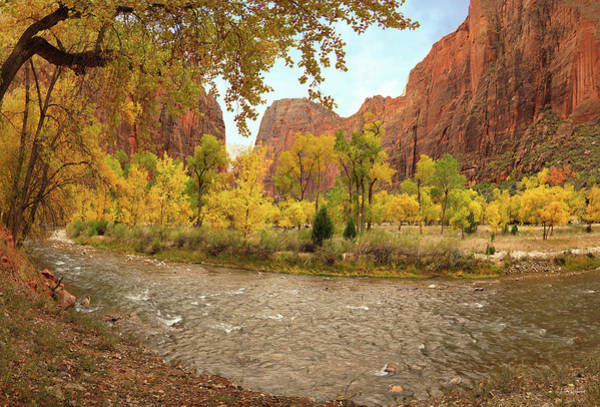 Photograph - Virgin River Canyon In Autumn by Leland D Howard