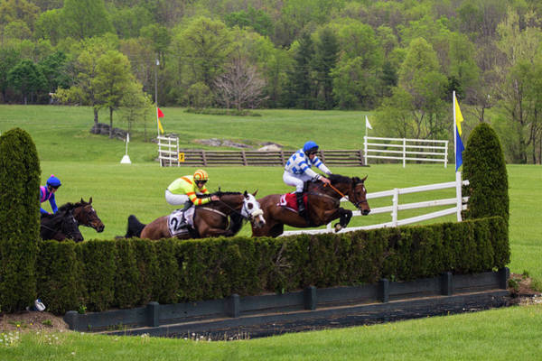 Photograph - Virginia Gold Cup by Fred DeSousa