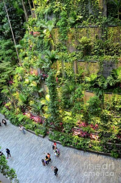 Photograph - Visitors At Entrance To Jewel Attraction With Green Hanging Gardens At Singapore Changi Airport by Imran Ahmed
