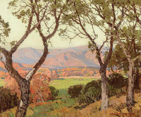 Wall Art - Painting - Vista Through The Sycamores, Ojai Valley by Edgar Payne