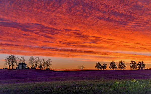 Photograph - Vivid Virginia Sunrise by Lori Coleman