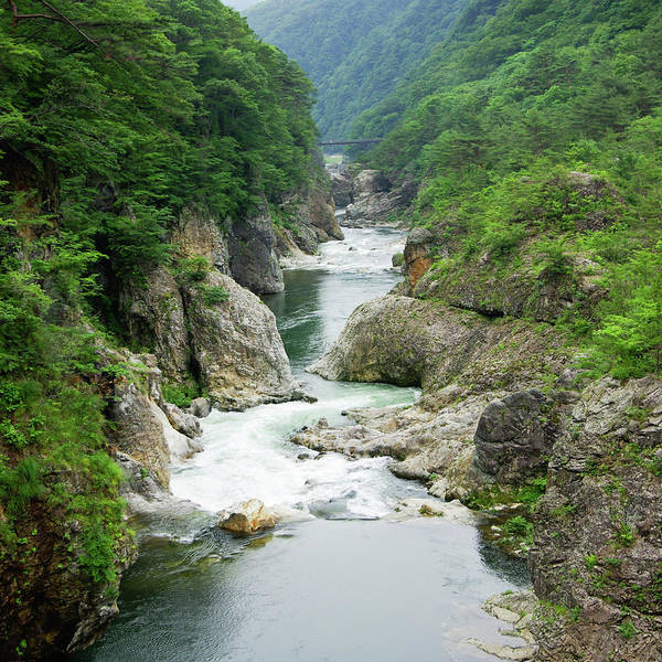 Nikko Photograph - Volcanic River Gorge In Lush Forest by Ippei Naoi