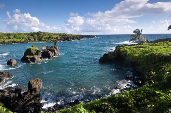 Maui Photograph - Volcanic Rock And Lush Tropical by John Elk