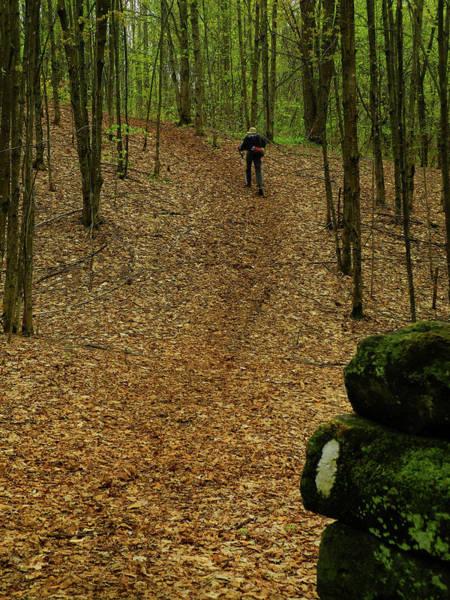 Photograph - Vt At Hiker by Raymond Salani III