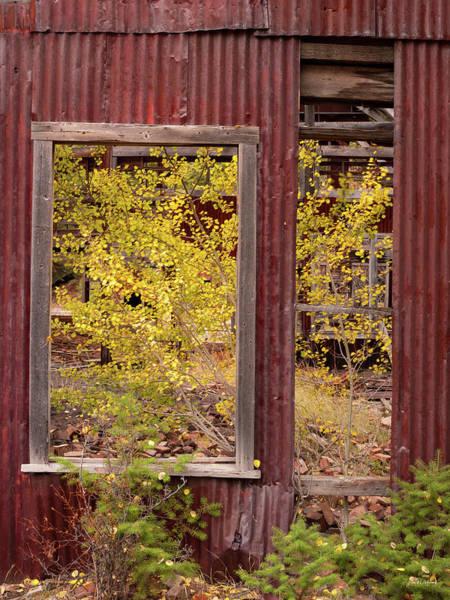 Photograph - Wabi-sabi Autumn by Leland D Howard