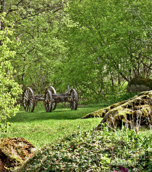 Photograph - Wagon Wheels by Vivian Martin