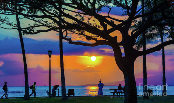 Photograph - Waikiki Beach Sunset by D Davila