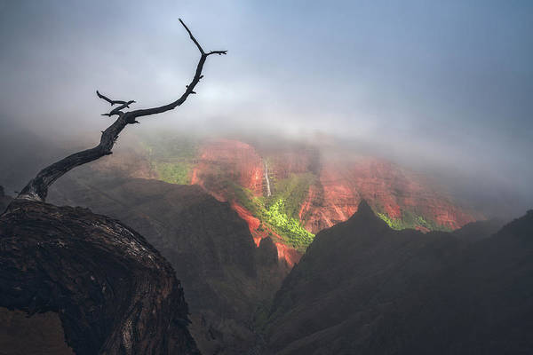 Wall Art - Photograph - Waimea Canyon by Tor-Ivar Naess