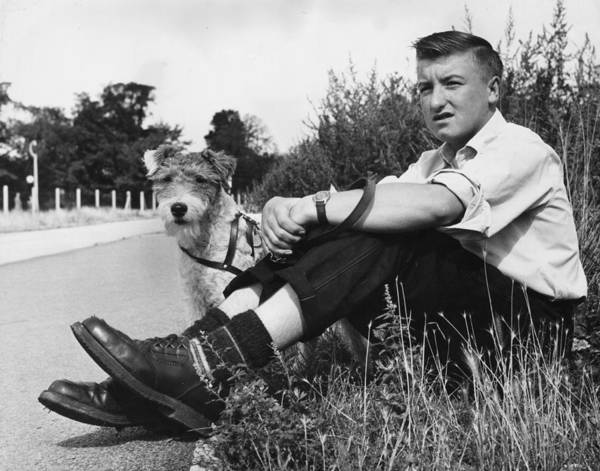 White Dog Photograph - Wait With Dog by John Drysdale