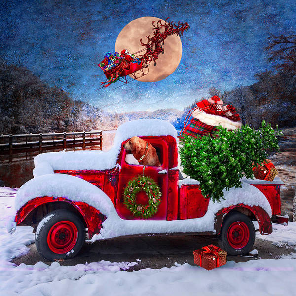 Photograph - Waiting For Santa In Square  by Debra and Dave Vanderlaan