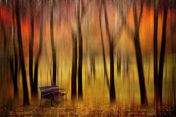 Digital Art - Waiting For You In My Dreams by Debra and Dave Vanderlaan