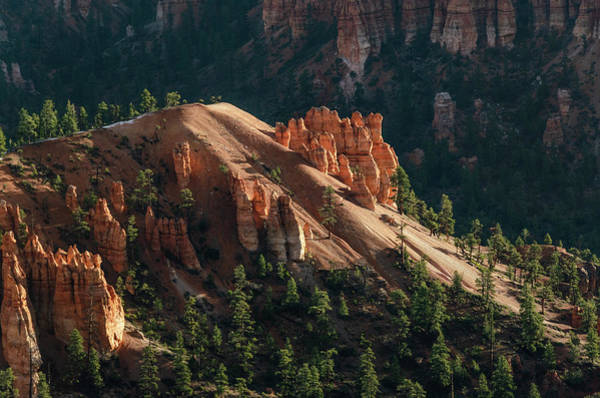 Photograph - Wakeup Hoodoos  by Gaelyn Olmsted