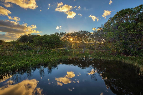 Photograph - Wakodahatchee Wetlands Sunburst by Juergen Roth