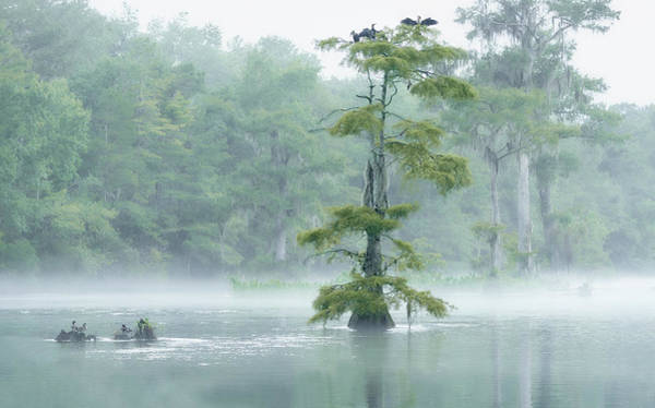 Wall Art - Photograph - Wakulla Morning by Bill Chambers