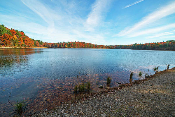 Photograph - Walden Pond Beautiful Fall Foliage Concord Ma by Toby McGuire