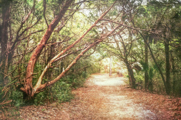 Photograph - Walk Into A Dream In Watercolors by Debra and Dave Vanderlaan