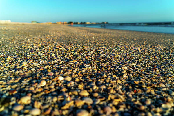 Sea Wall Art - Photograph - Walking The Beach by Ric Schafer