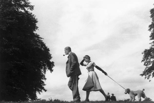 Poodle Photograph - Walking The Dog by Thurston Hopkins