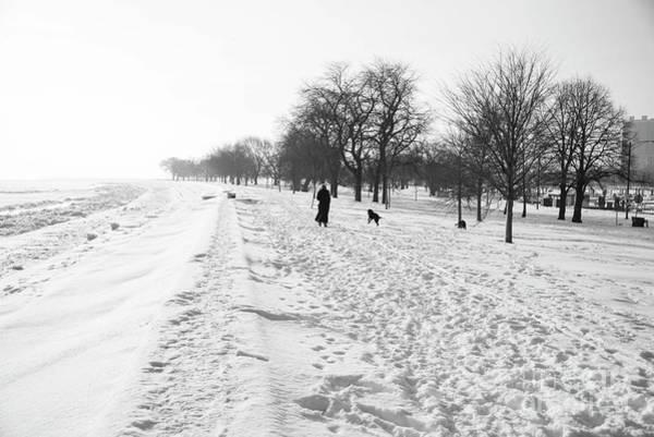 Dog Walker Photograph - Walking The Lake by David Bearden