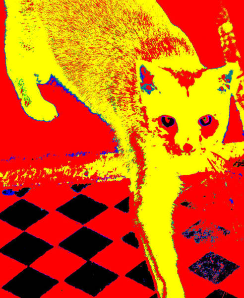 Digital Art - Walking Yellow Cat by Artist Dot