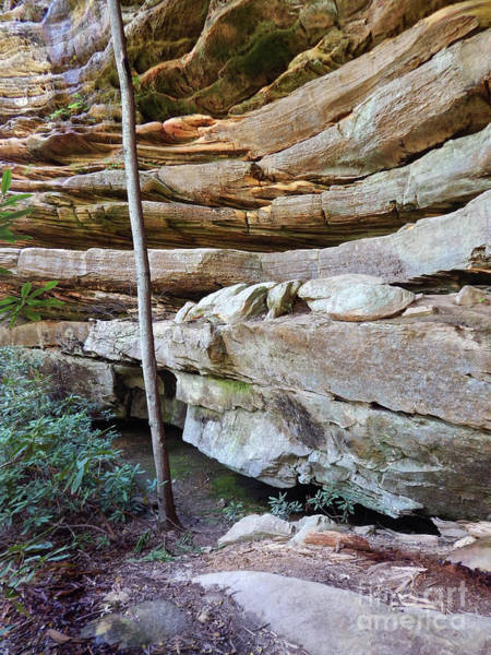 Photograph - Wall Of Layered Sandstone by Phil Perkins