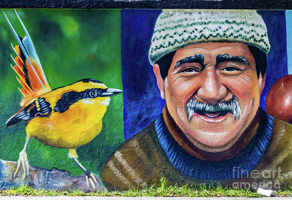 Photograph - Wall Painting In Puerto Natales, Chile by Lyl Dil Creations