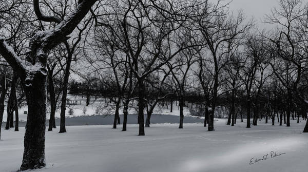 Photograph - Walnut Grove In Winter by Edward Peterson