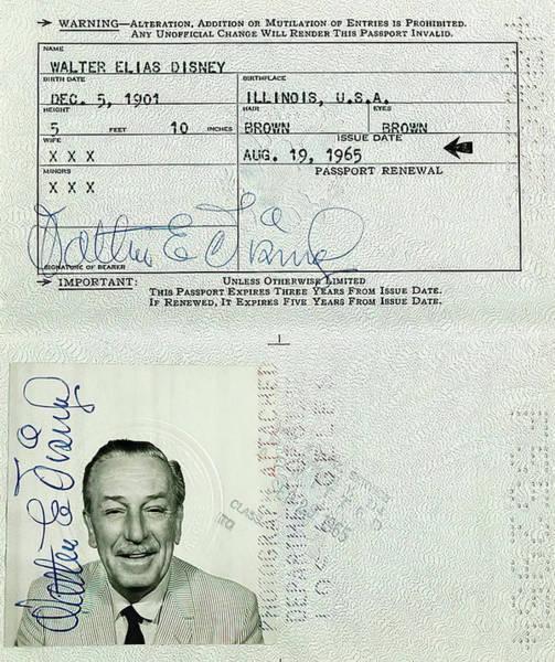 Wall Art - Photograph - Walt Disney Passport 1965 by Daniel Hagerman