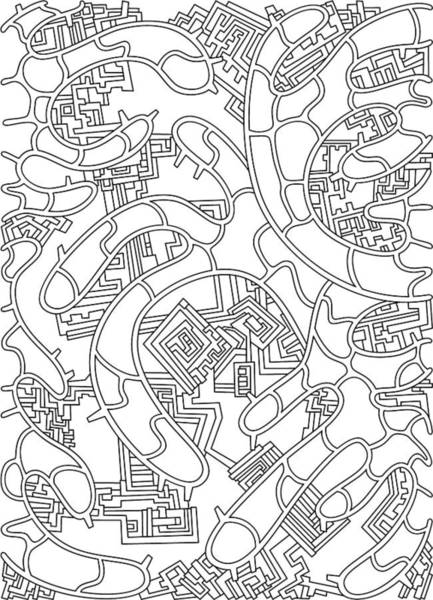 Drawing - Wandering 37 Black And White Line Art by Dream Ripple